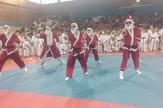 Karate turnir Nippon top ten - Trofej Voždovca