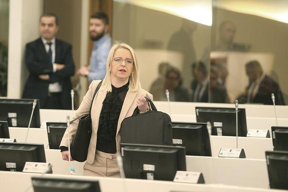 Snjezana Novaković - Bursać