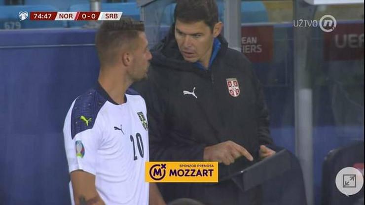 Nikola Žigić i Sergej Milinković Savić