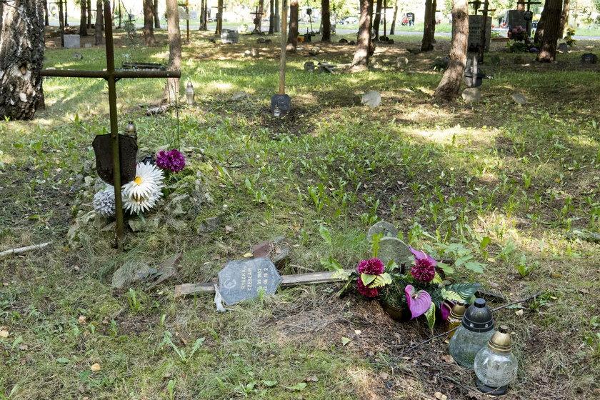 Zaniedbane groby na cmentarzu komunalnym w Katowicach
