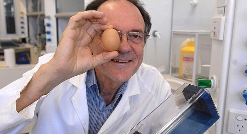 An Australian scientist has been honoured with an Ig Nobel prize for creating a way to unboil an egg.