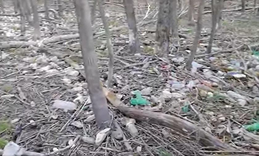 Morze plastiku nad Jeziorem Żywieckim.