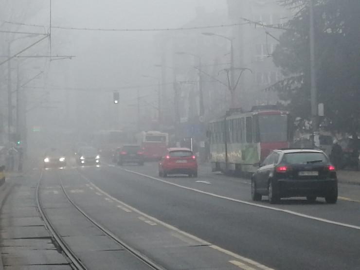 banovo brdo magla