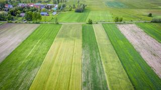 Wzrost cen nawozów. Wiceminister rolnictwa: Kierujemy wniosek do UOKiK