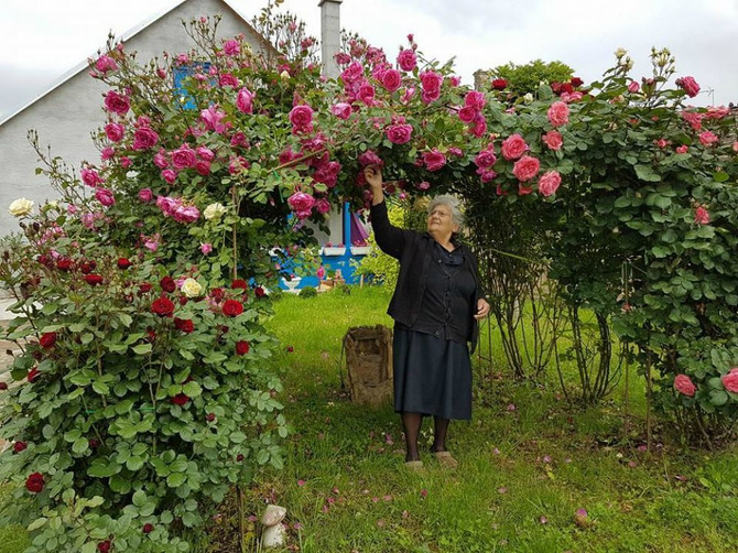 Njeno dvorište je prava oaza mira