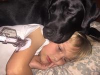 Śpiące psy randki