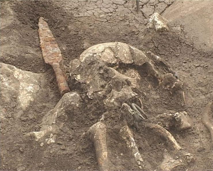 351101_bela-palanka-skeleti110613ras-foto-zoran-panic-4