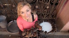 Wojciechowska o swoim programie, planach na przyszłość i show-biznesie