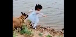Niesamowity filmik! Zobacz, co robi ten pies
