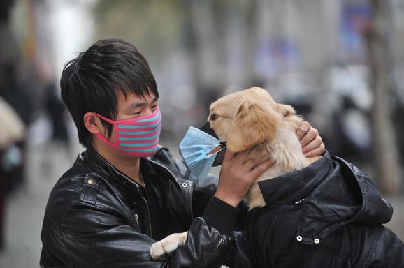 Važnije je očistiti psu šape nakon šetnje nego mu staviti masku