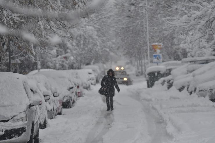 Zima, sneg, padavine, Novi Sad
