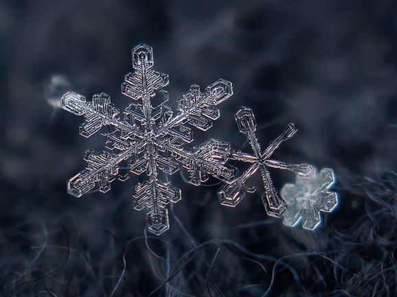 Slikao je pahuljice raznih oblika i veličina (FOTO: Alexey Kljatov)