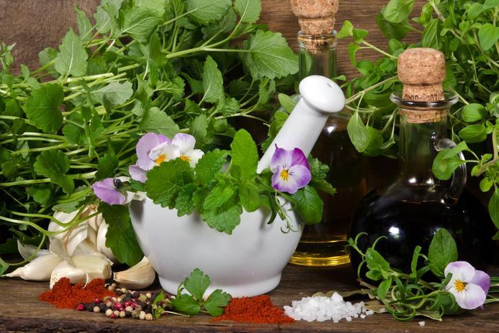 Zioła W Medycynie I Kuchni Oto Przepisy Na Dania Potrawy Z