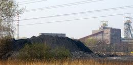 Prezesi zarabiają krocie, a węgiel leży na zwałach