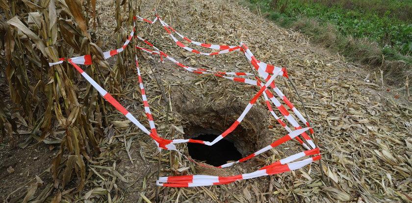 Tajemnicza dziura w Krynicy. To wejście do lochu ze skarbami?!