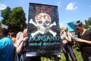 Złe firmy – Monsanto i inni. Dlaczego wolny rynek nie radzi sobie z takimi korporacjami?