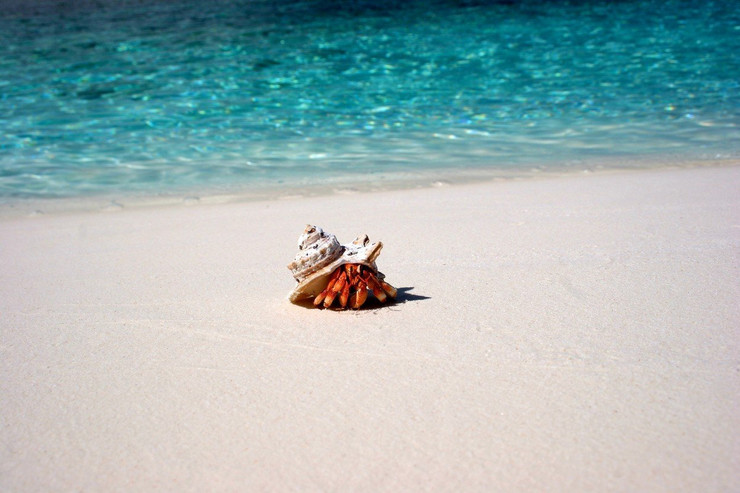 kokosova ostrva