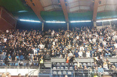 KK Partizan navijači