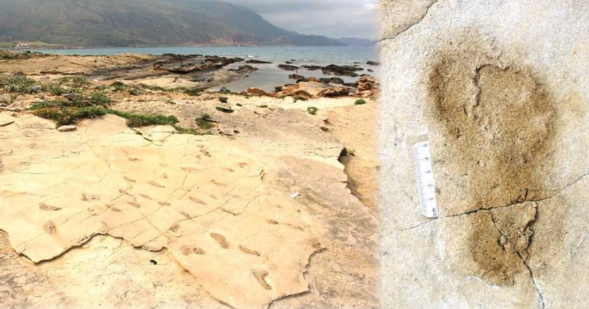 Ślady dwunożnych homininów odnalazł na Krecie dr Gerard Gierliński