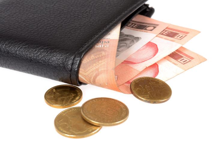 novčanik dinari plata novac