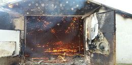 Tysiące zwierząt zginęło w pożarze
