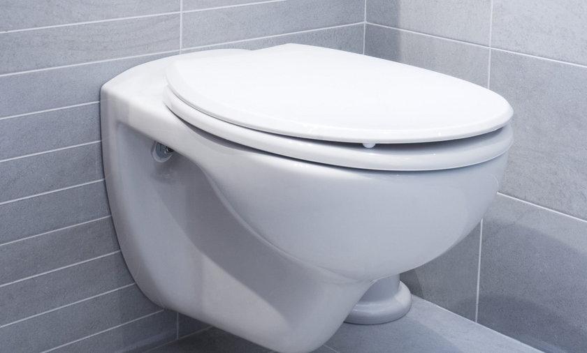 Naukowcy pracują nad inteligentnymi toaletami