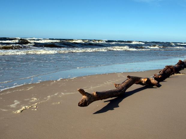 Dzika plaża w Mrzeżynie