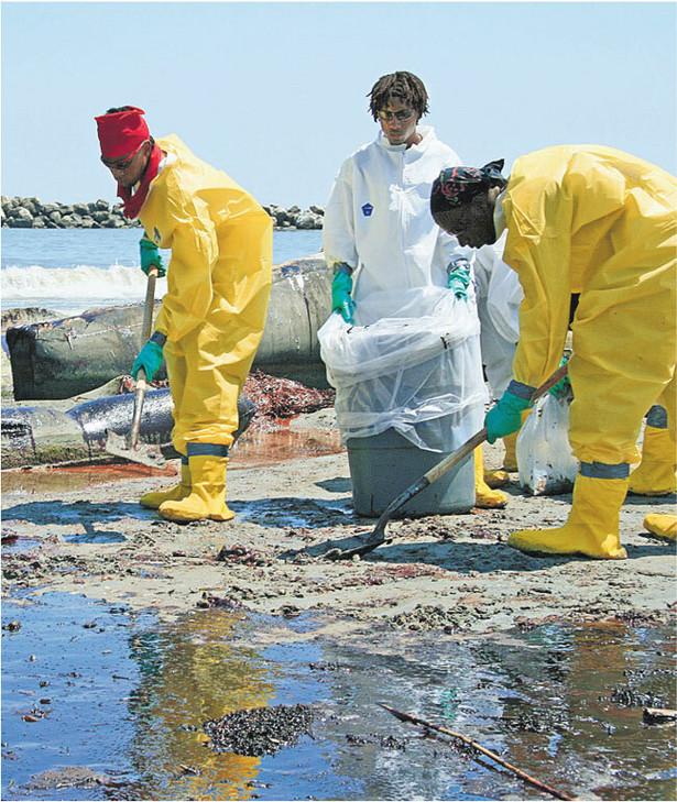 Usuwanie ropy z plaż Luizjany Fot. AFP/East News