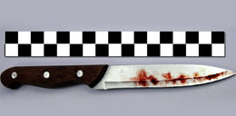 Krwawy atak w Bieszczadzkim Parku Narodowym!