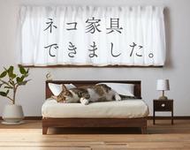 Kolekcja mebelków dla kotów stanowi część akcji promocynej regionu Fukuoki, w którym znajduje się około 150 fabryk meblowych