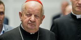 """Kardynał Dziwisz odpiera zarzuty. """"Nigdy nie wspierałem osób niegodnych"""""""