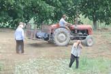 traktor veliko selo foto  milan ilic (3)