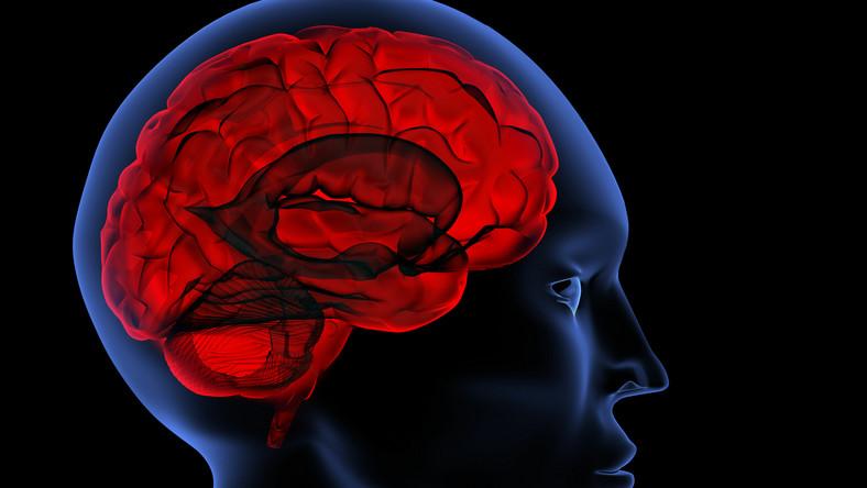 Źródłem zapalenia opon mózgowych jest skażony sterydowy preparat przeciwbólowy podawany w formie zastrzyku w kręgosłup