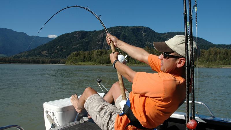Łowienie jesiotrów w rzece Fraser w Kanadzie