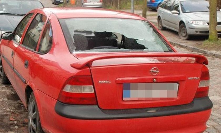 Wandale zdewastowali 16 aut