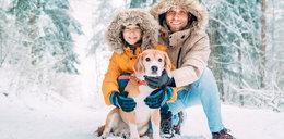 Jak zadbać o psa, gdy zimno i wieje