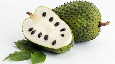 5 raisons pour lesquelles vous devez ajouter le corossol à votre alimentation