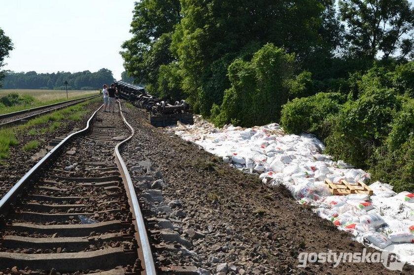Pociąg wypadł z torów. Wagony leżą w rowie