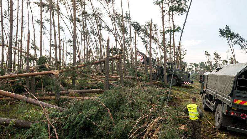 Żołnierze usuwają wiatrołomy, pod odbudowę linii średniego i niskiego napięcia w miejscowości Wąwelno