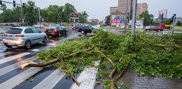 Nawałnice nad Polską. Nie żyje kobieta przygnieciona drzewem