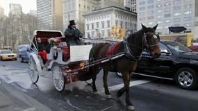 Burmistrz Nowego Jorku ogranicza liczbę dorożek w Central Parku