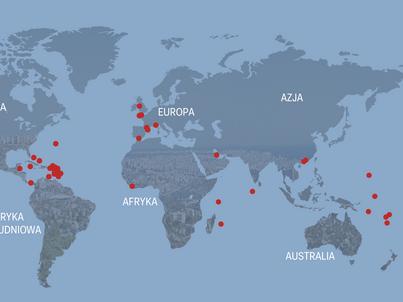 Osiem krajów zniknie z listy rajów podatkowych? Tego chcą eksperci z UE