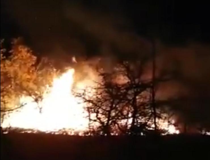 srvljig požar