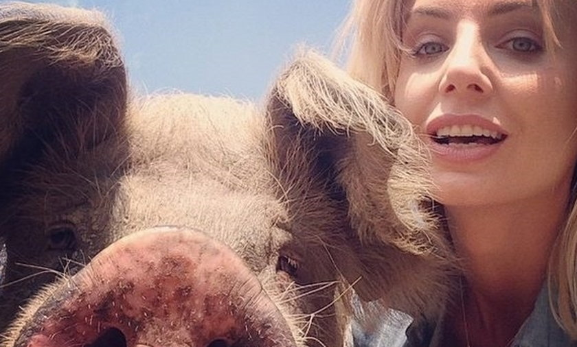 Szulim pozuje ze świnią!