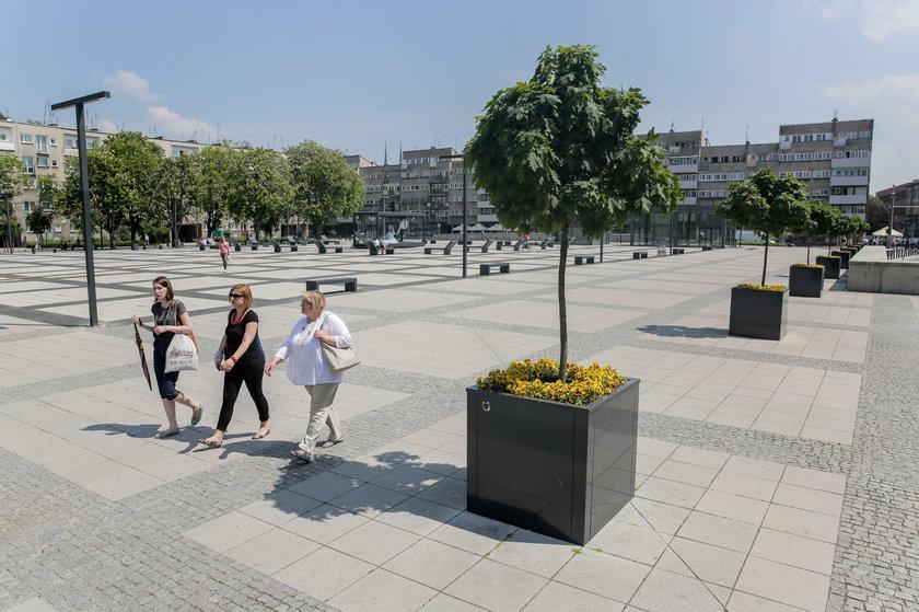 Wrocław będzie tętnić zielenią
