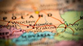 Samorząd chce uzyskać 200 mln zł z EBI na rewitalizację Parku Śląskiego