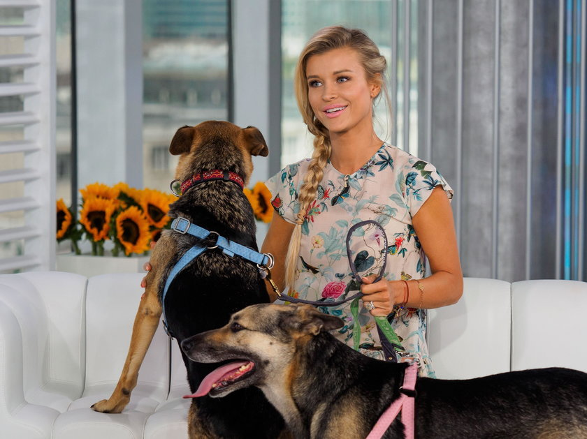 Joanna pomaga zwierzętom