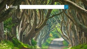 Bing zweryfikuje podane informacje