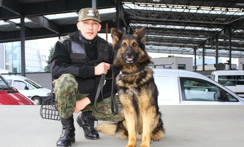 pies straży granicznej