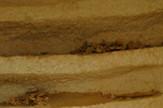 sarkofag grobnica minja egipat 2 epa